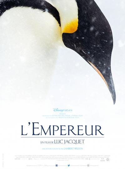 March of the Penguin 2 - The Call